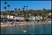 Avalon Bay beach, Santa Catalina Island. California, USA (color)