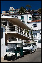 Golf cart and hillside houses, Avalon, Santa Catalina Island. California, USA ( color)