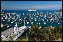 Avalon harbor from above, Avalon Bay, Catalina Island. California, USA ( color)