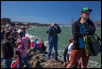 Spectators following America's Cup decisive race from shore. San Francisco, California, USA ( color)
