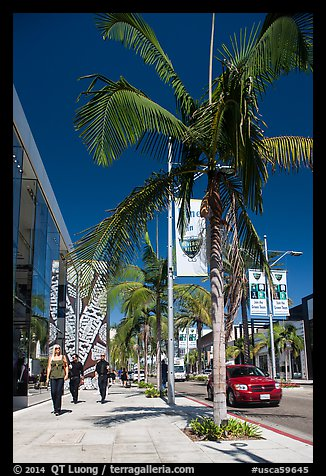 Rodeo Drive. Beverly Hills, Los Angeles, California, USA (color)