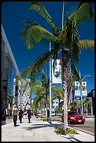 Rodeo Drive. Beverly Hills, Los Angeles, California, USA ( color)