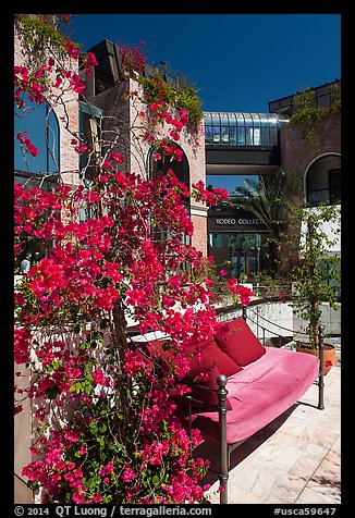 Red flowers and bench with pillows in shopping area. Beverly Hills, Los Angeles, California, USA (color)