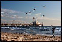 Woman and seagulls in front of Newport Pier. Newport Beach, Orange County, California, USA ( color)