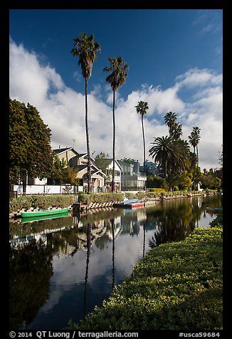 Houses, boats, and palm trees along canal. Venice, Los Angeles, California, USA (color)