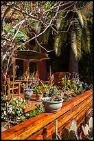 Front deck with potted plants. Venice, Los Angeles, California, USA ( color)