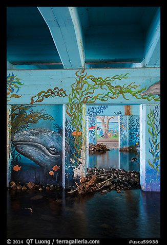 Underpass with mural of marine life, Leo Carrillo State Park. Los Angeles, California, USA (color)