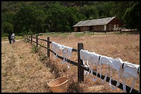 Laundry drying on fence, as elderly couple in period costume walks in distance, Fort Tejon. California, USA ( color)