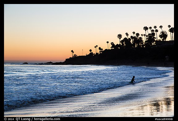 Beach at sunset with silhouettes of palm trees and beachgoer. Laguna Beach, Orange County, California, USA (color)