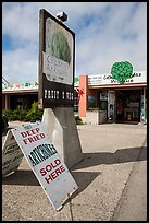Giant Artichoke Produce store, Castroville. California, USA ( color)