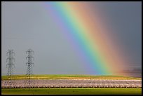 Rainbow, orchard in bloom, and power lines. California, USA ( color)
