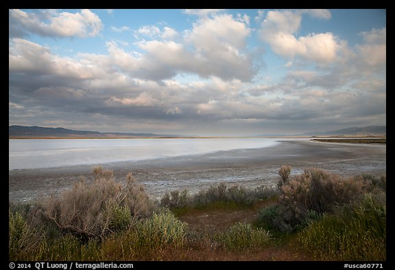 Soda Lake, late afternoon. Carrizo Plain National Monument, California, USA (color)