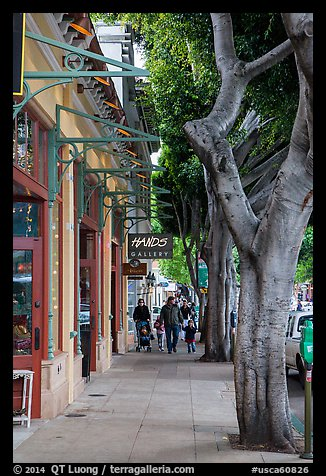 Shopping street. California, USA (color)