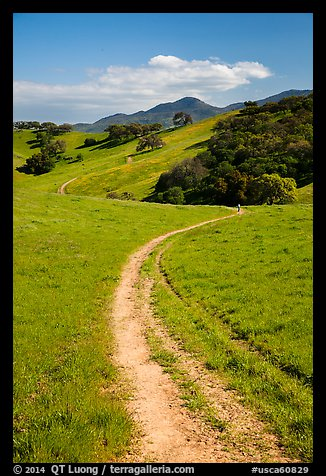 Trail and luch hills, Pacheco State Park. California, USA (color)
