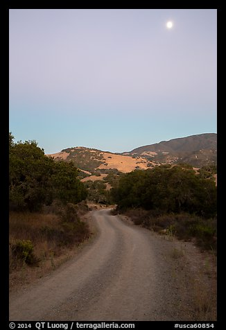 Road at dusk and moon. California, USA (color)
