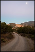Road at dusk and moon. California, USA ( color)