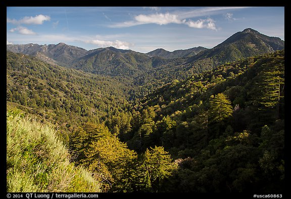 View from Bottchers Gap, Los Padres National Forest. Big Sur, California, USA (color)