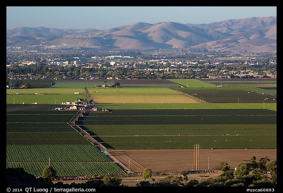 Agricultural lands in Salinas Valley. California, USA (color)