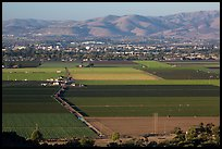 Agricultural lands in Salinas Valley. California, USA ( color)
