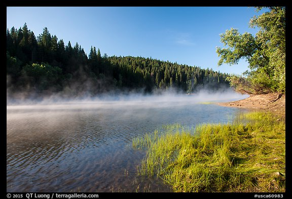 Early morning fog raising from Jenkinson Lake. California, USA (color)