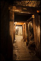 El Dorado Mine gallery with wooden beams, Gold Bug Mine, Placerville. California, USA ( color)