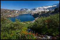 Wildflowers, stream, and lake, Twenty Lakes Basin, Inyo National Forest. California, USA ( color)