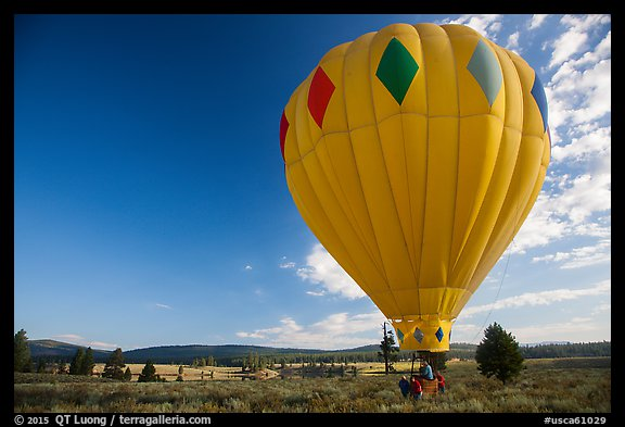 Hot air balloon carried after landing, Tahoe National Forest. California, USA (color)
