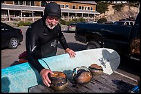 Man with surfboard examining abalone. California, USA ( color)
