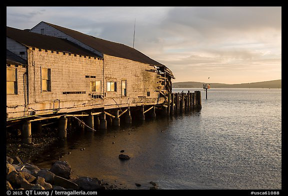 Wharf in late afternoon, Bodega Bay. Sonoma Coast, California, USA (color)