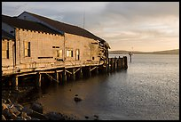 Wharf in late afternoon, Bodega Bay. Sonoma Coast, California, USA ( color)