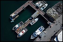 Aerial view of wharf and tour boats. Monterey, California, USA ( color)