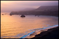 Goat Rock State Beach, sunset. Sonoma Coast, California, USA ( color)
