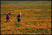 Children playing in a field of Poppies. Antelope Valley, California, USA
