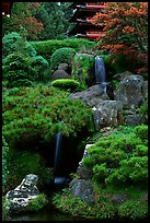 Cascade in the Japanese Garden, Golden Gate Park. San Francisco, California, USA (color)