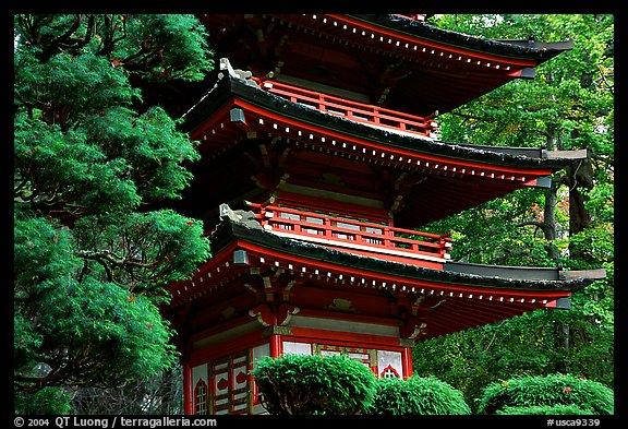 Pagoda, Japanese Garden, Golden Gate Park. San Francisco, California, USA