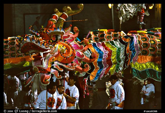 dragon during the chinese new year celebration san francisco california usa - San Francisco Chinese New Year