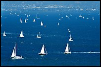 Sailboats in the Bay, seen from Marin. California, USA
