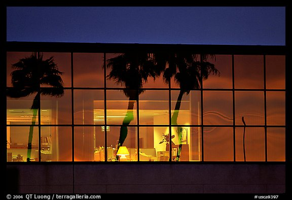 Palm Trees reflected in large bay windows at sunset. San Francisco, California, USA (color)