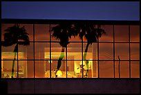 Palm Trees reflected in large bay windows at sunset. San Francisco, California, USA
