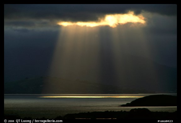 Sunbeams above the Golden Gate, seen from the Berkeley Hills. Berkeley, California, USA
