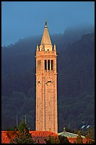 The Campanile, University of California at Berkeley campus. Berkeley, California, USA ( color)