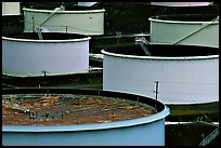 Oil tanks,  ConocoPhillips refinery, Rodeo. San Pablo Bay, California, USA (color)