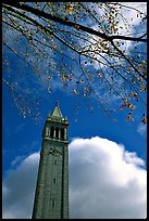 The Campanile, University of California at Berkeley campus. Berkeley, California, USA