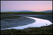 Wetlands at dusk, Palo Alto Baylands Preserve. Palo Alto,  California, USA