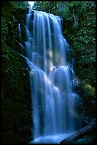 Berry Creek Falls. Big Basin Redwoods State Park,  California, USA
