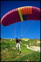 Paraglider launching, the Dumps, Pacifica. San Mateo County, California, USA ( color)