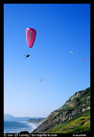 Paragliding above a sea cliff, the Dumps, Pacifica. San Mateo County, California, USA (color)