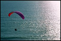 Paraglider above the ocean, the Dumps, Pacifica. San Mateo County, California, USA