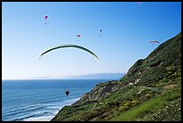 Paragliders soaring above cliffs, the Dumps, Pacifica. San Mateo County, California, USA ( color)