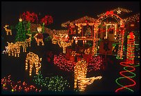 House Christmas Lights. San Jose, California, USA ( color)
